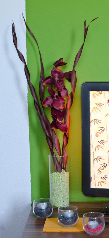 einsatz in vier w nden vanni vanilla. Black Bedroom Furniture Sets. Home Design Ideas