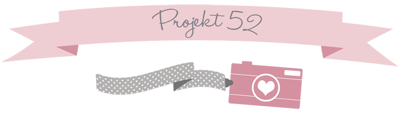 Header Pro521